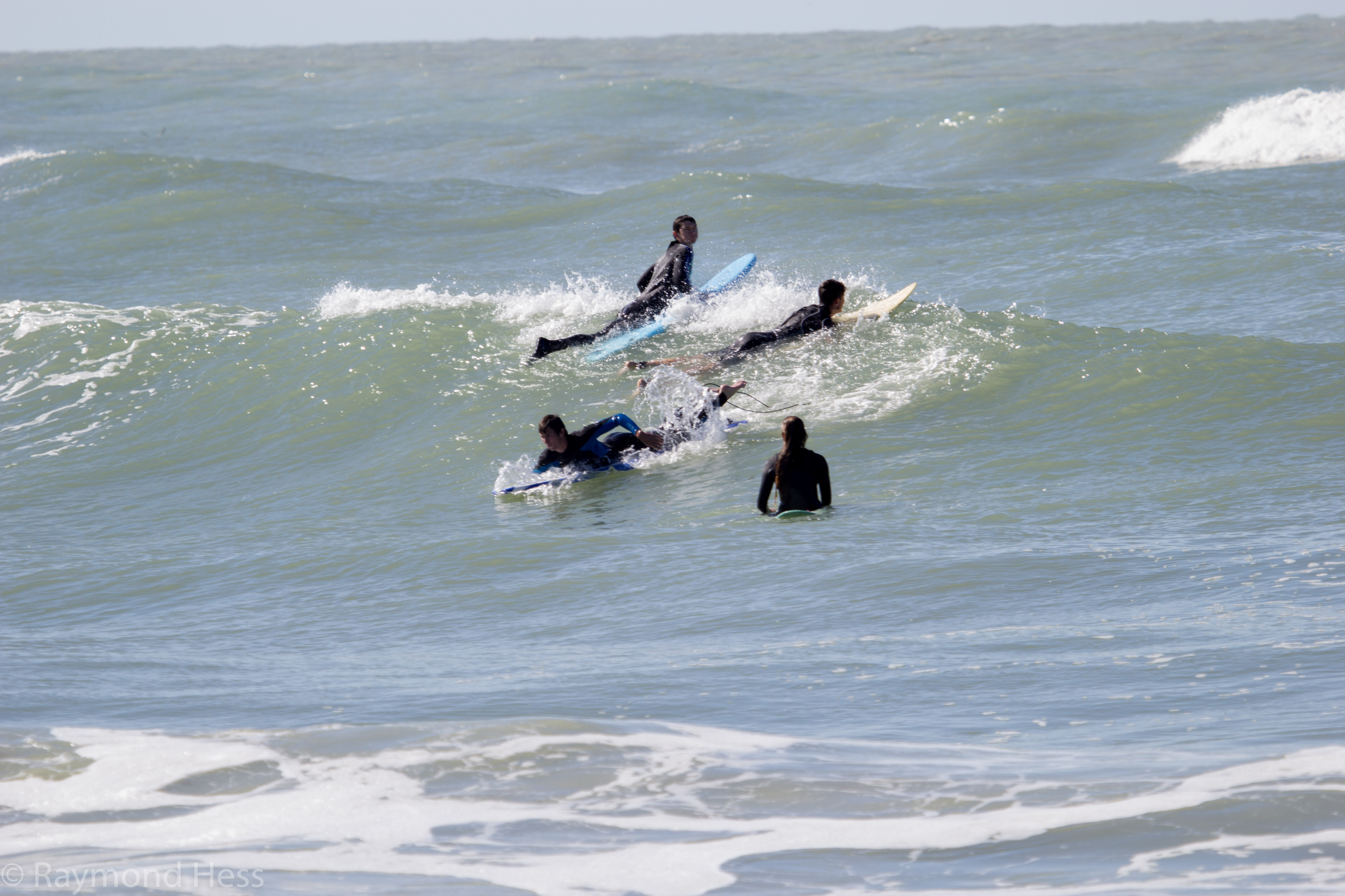 Surfing gallery after a january cold front in venice florida more pictures of people shredding in venice nvjuhfo Choice Image