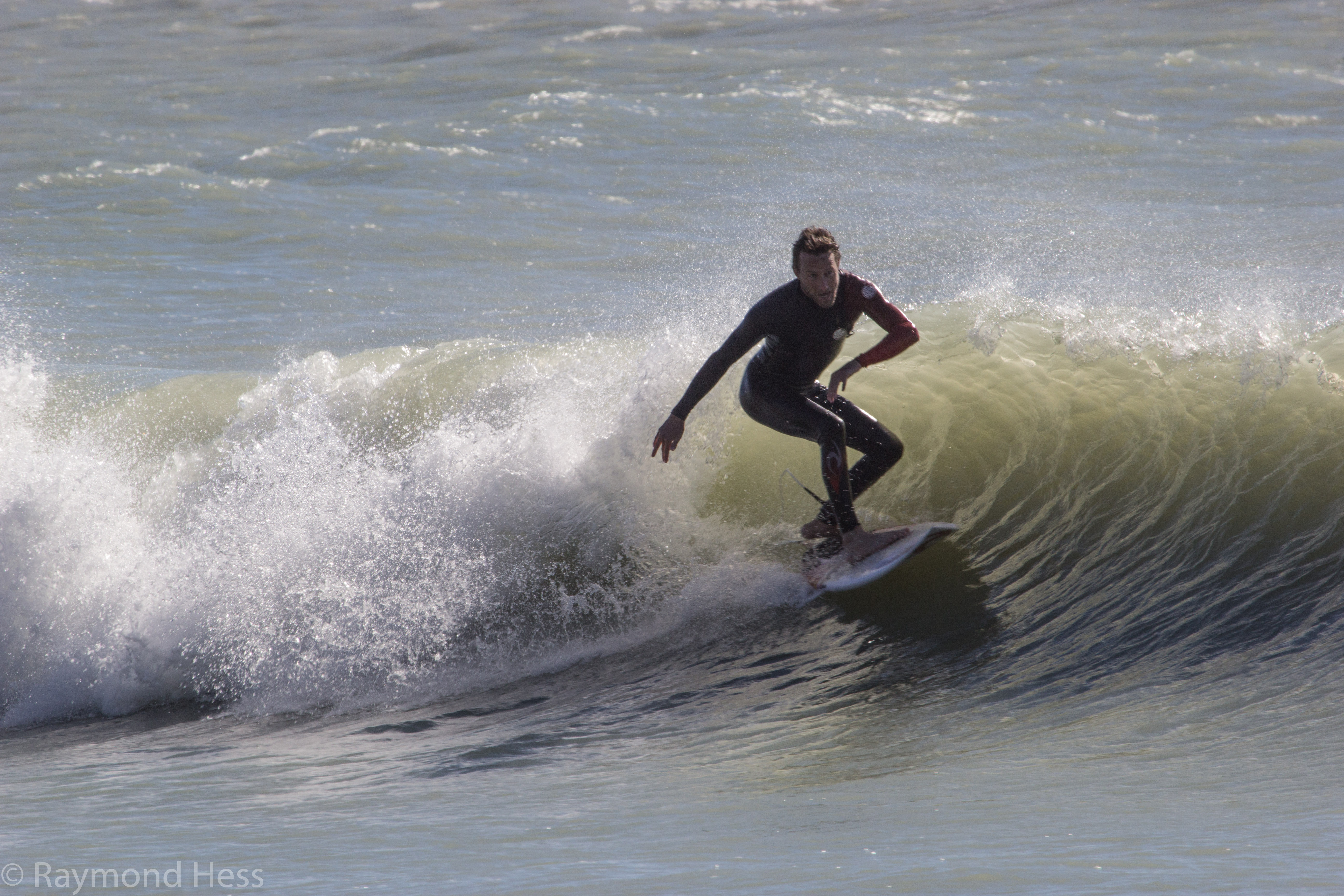 Venice surfingthegulf continue reading surfing gallery after a january cold front in venice florida nvjuhfo Choice Image