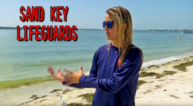 Sand Key Lifeguards